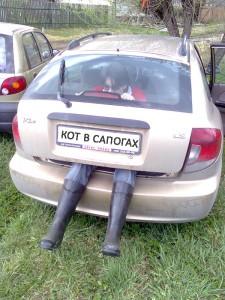 Машина с ногами
